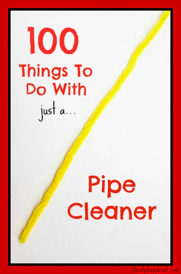 100 Things To Do With Just A Pipe Cleaner